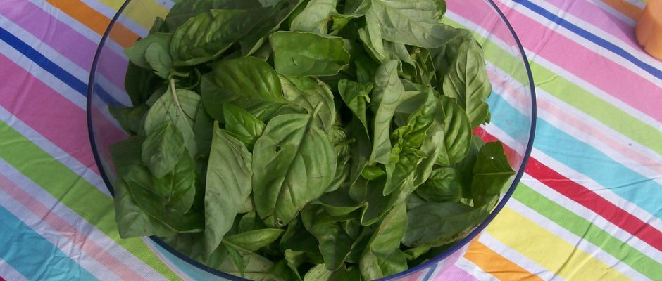 How to Julienne Basil Leaves