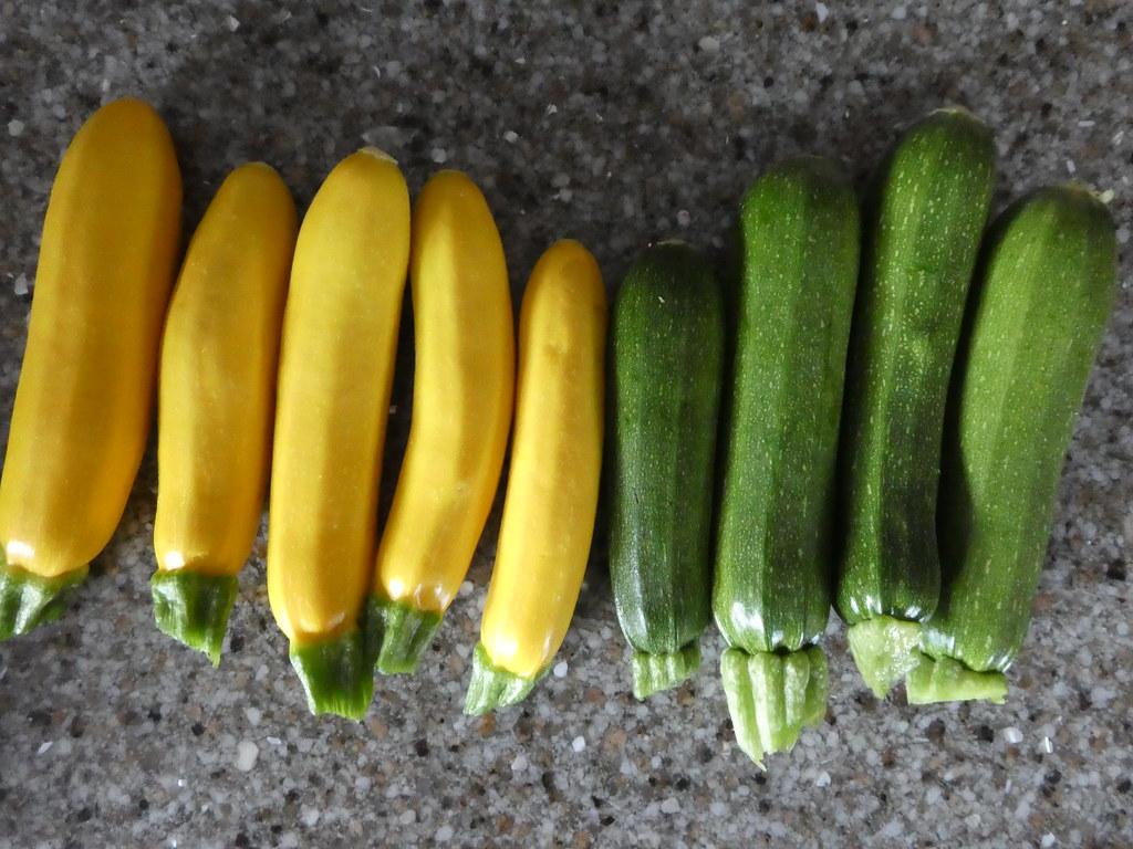 Grilled Zucchini Caprese Boats