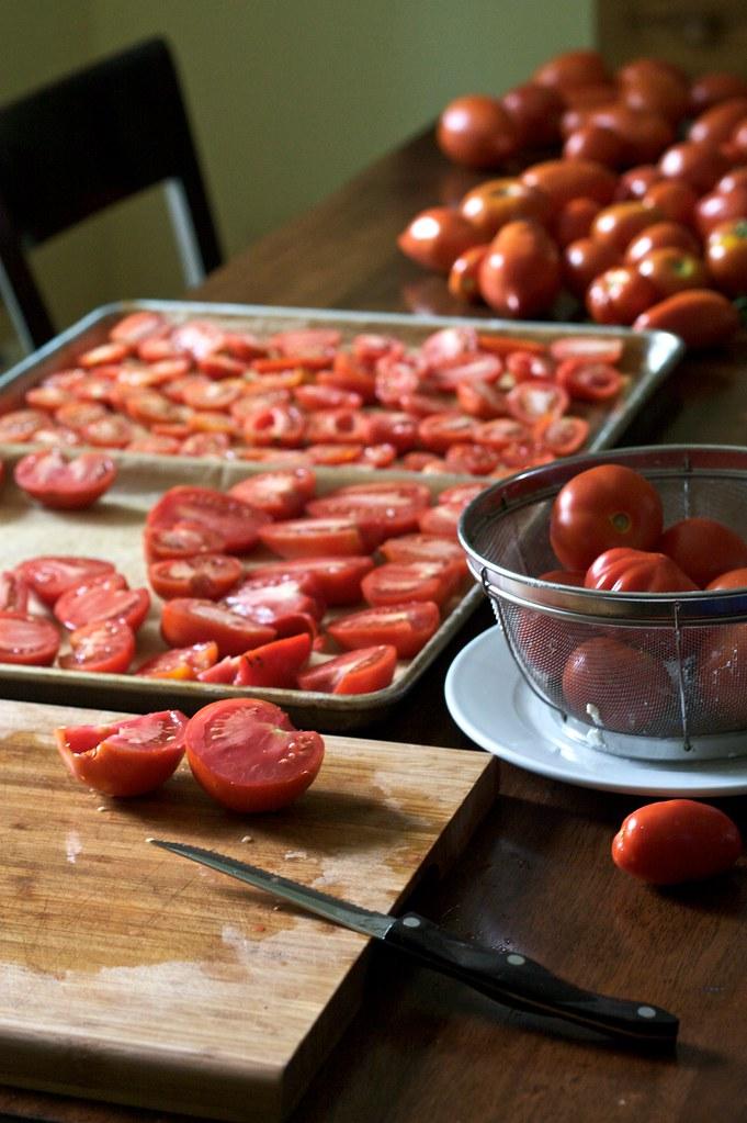 Roasted Tomato and Ricotta Sandwich